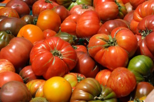 heirloom-tomatoes-large3