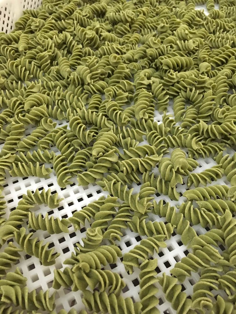 Portland Farmers Market » Nettle Pasta with Chive Morel Cream Sauce